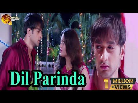 Dil Parinda | Sad Song | HD Video