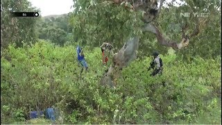 Bersembunyi di Semak-semak, Aksi Penyelundupan BBM ke Timor Leste Digagalkan  Petugas - 86