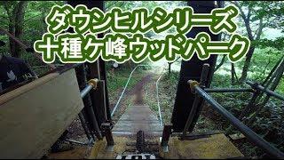 [オンボード映像]ダウンヒルシリーズ開幕戦!十種ケ峰ウッドパーク