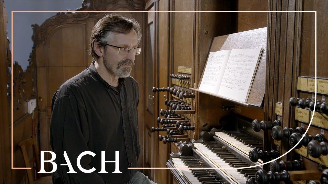 Smits on Bach Concerto in A minor BWV 593 | Netherlands Bach Society