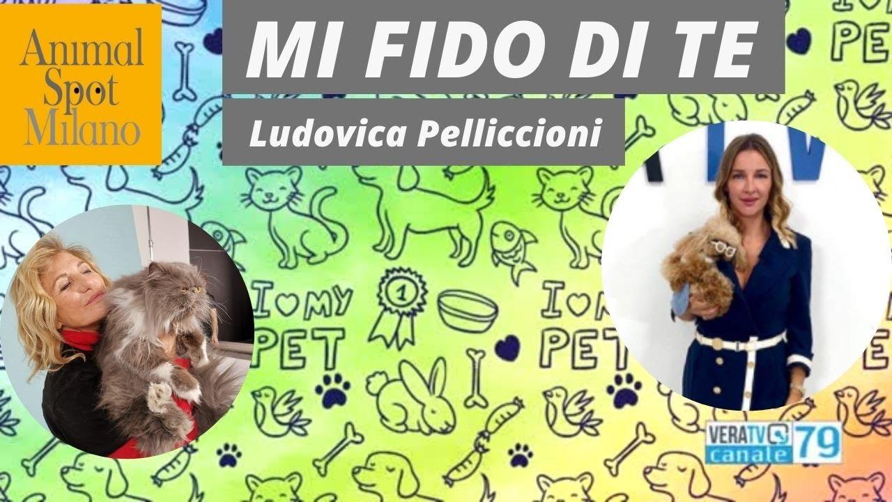 Mi fido di te - Intervista tv - Giulia Pasqualetti AnimalSpotMilano e Ludovica Pelliccioni