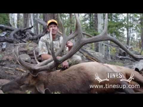 Elk Hunt:Hunting Elk In Southern Utah For A BIG 6x6, Full Hunt And Kill Shot, Tines Up