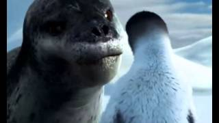 Happy Feet Leopard Seal