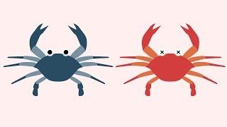 蟹黃就是蟹膏?NO! 看動畫分辨螃蟹