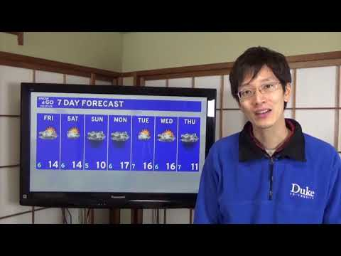 Know and Go Tokyo Weather: March 1, 2019