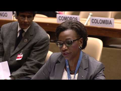 Bahamas: Statement made at the Preparatory Committee of the Third UN World Conference on DRR