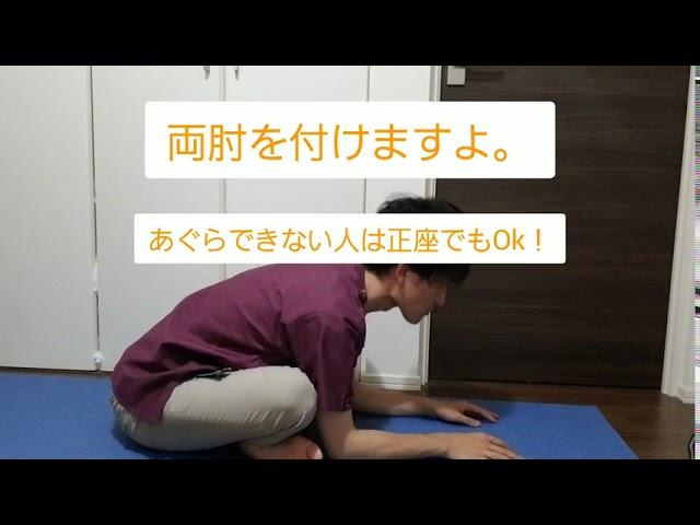 体幹をしやなかに使えるようにする運動療法~脊柱~