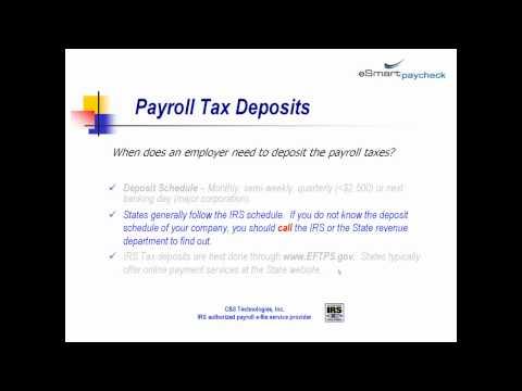 payroll basics 1118