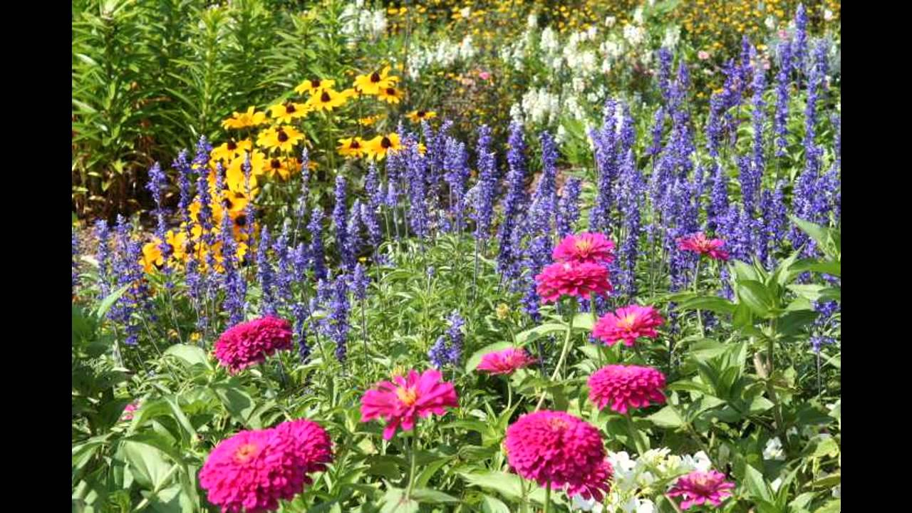 Design ideas for Small perennial garden - YouTube