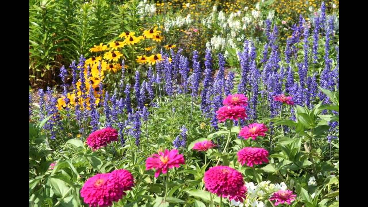 Design Ideas For Small Perennial Garden YouTube