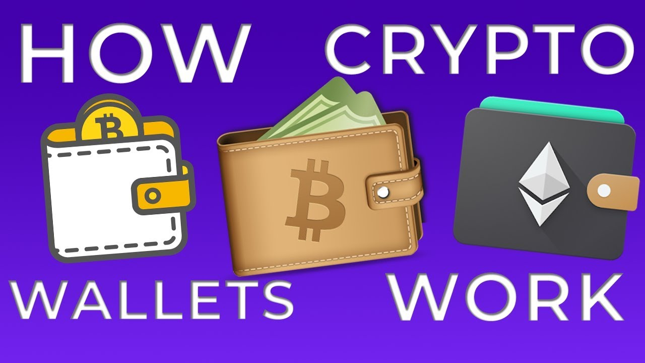 how do wallets work cryptocurrency