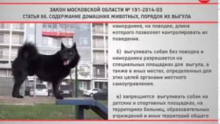 КРТВ. Закон МО № 191-2014-ОЗ  Статья 66. Содержание домашних животных, порядок их выгула