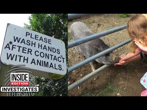 Kristina Kage - What's at Petting Zoos That Can Get You Sick?