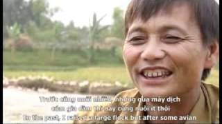 The Story of Avian Influenza in a Village