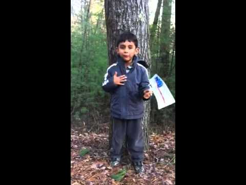 4 Year Old Singing Patriotic Songs