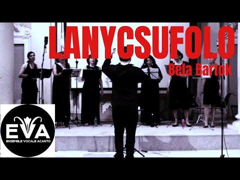 Lanycsufolo - Zoltan