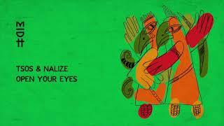 TSOS & Nalize - Open Your Eyes