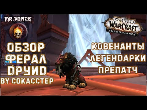 ✅ Обзор Ферал Друид WOW Shadowlands патч 9.0.2⚠️Ковенанты Легендарки    Сила Зверя Кот препатч 9.0.1
