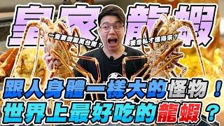 世界上最好吃且跟人身體一樣大的怪物級龍蝦!價值四萬元的海鮮''皇家龍蝦''吃到爽!【有錢人的世界 EP 04】
