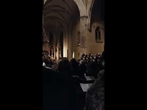 Magical Christmas choir and organ concert in Europe