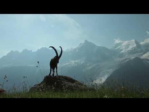 Qui est le Conservatoire d'espaces naturels de Haute Savoie ?
