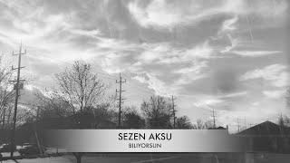 SEZEN AKSU -BILIYORSUN LYRICS (Şarkı Sözleri) Resimi