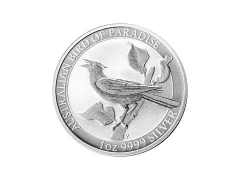 Bird Of Paradise - Manucodia 2019 - 1 Oz
