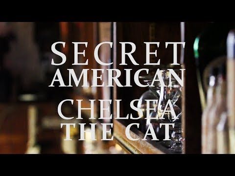 The Key Presents: Secret American - Chelsea the Cat
