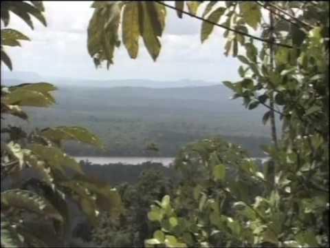 BBC Fast Track - Exploring Guyana