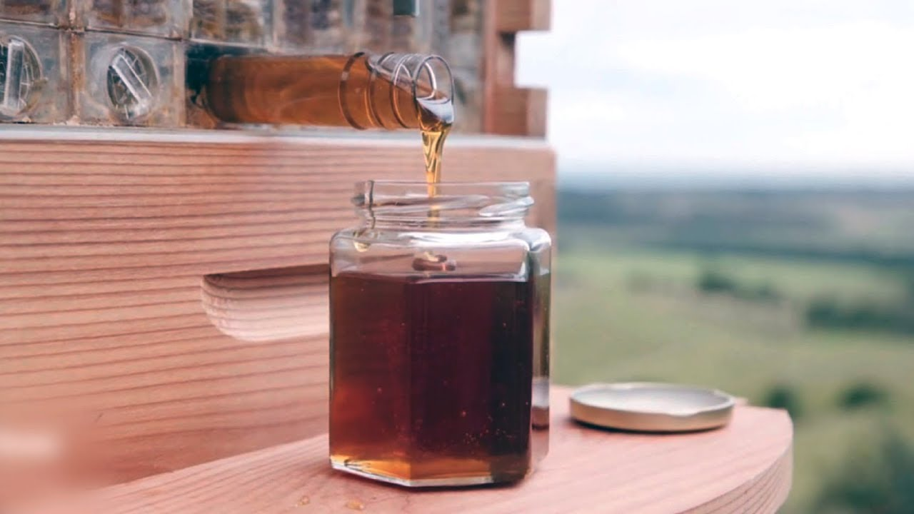 See How This Revolutionary Beehive Design Provides Honey-On-Demand