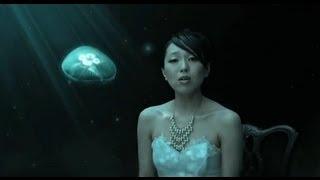 笹川美和 - 愚かな願い