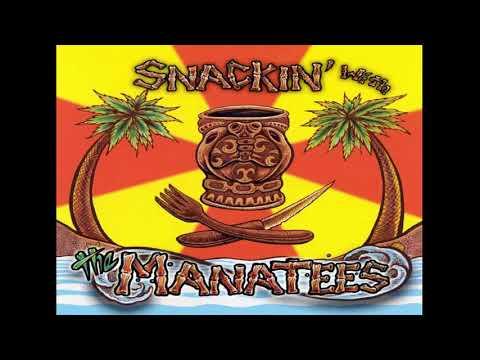The Manatees - The Model (Kraftwerk Surf Instrumental Cover)