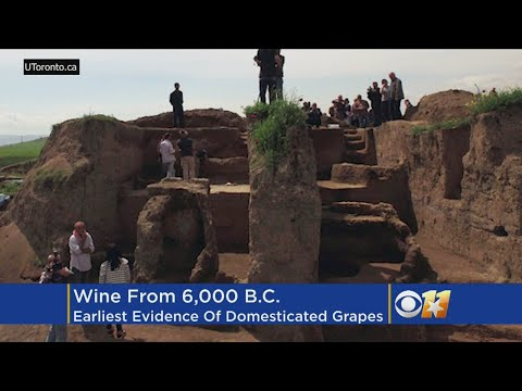 Wine Discovery From 6,000 B.C.