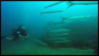 scuba diving to 30 meters in mallorca with curtis iggulden