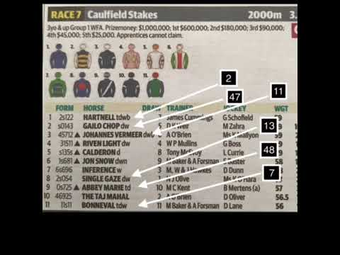 Caulfield Stakes 141017 Melbourne Cup lead up race