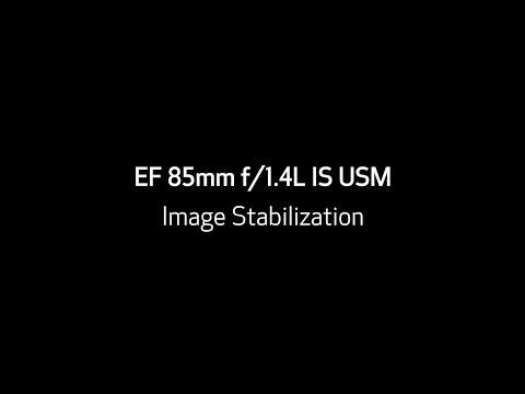 Effect of Image Stabilization in the Canon EF 85mm f/1.4L IS USM