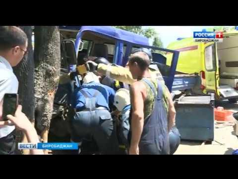 Сегодня днем в Биробиджане на улице Калинина автомобиль врезался в дерево