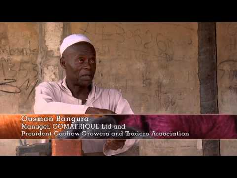 Trading stories THE GAMBIA