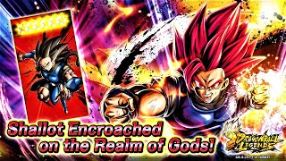 HOW TO GET SUPER SAIYAN GOD SHALLOT TO 6 STARS! Dragon Ball Legends Guide