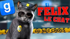 FELIX LE CHAT FLIC - GARRY'S MOD DARKRP