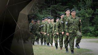 Armée canadienne : des tonnes d'images médicales inaccessibles