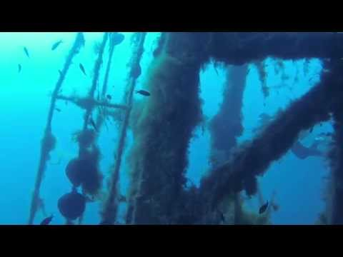 Scuba Diving Cyprus Zenobia Wreck Dive With Marine Divers Paphos