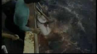 """TEFLA & JALEEL ft. J-LUV """"wundervolle welt"""""""