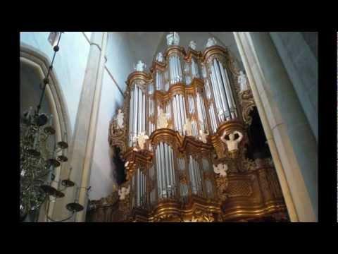 Felix Mendelssohn's Organ Sonata No.3 (Op. 65)' Ab Weegenaar - Hinszorgan Kampen