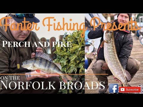 Fanter Fishing- Winter Perch And Pike Fishing On The Norfolk Broads, Wroxham And Horning