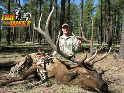Austin's Arizona Archery Elk Hunt Video