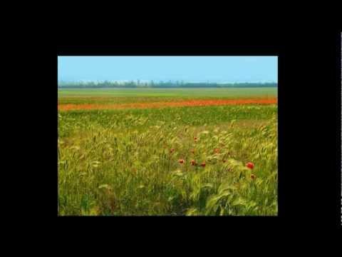 Фото слайд-шоу Природа Кубани.mp4