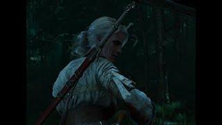 The Witcher 3, Video Guía: Tras los pasos de Ciri - Velen: Las Damas del Bosque