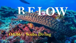 BELOW - Oahu Awesome Scuba Diving  GoPro 4K - Hawaii