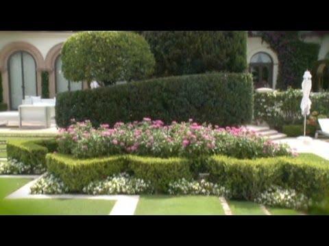 Million-dollar backyards